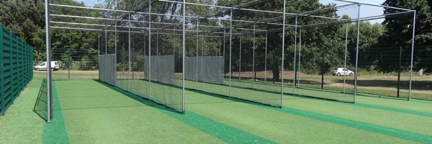 cricket-img